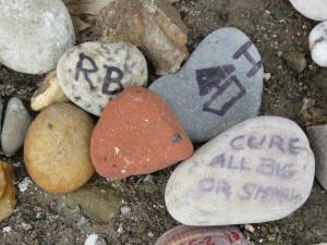 Dennis' Rocks